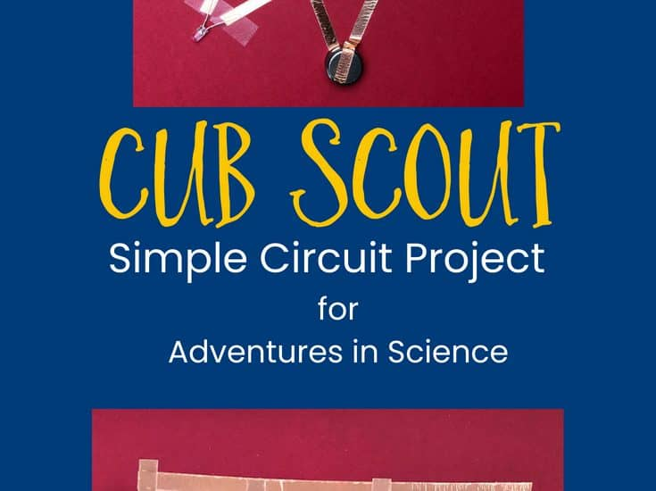 Cub Scout Ideas Page 8 Of 43 Tips For Cub Scout