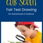 fair test drawing for Cub Scouts