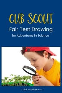 How To Easily Draw A Scientific Fair Test Cub Scout Ideas