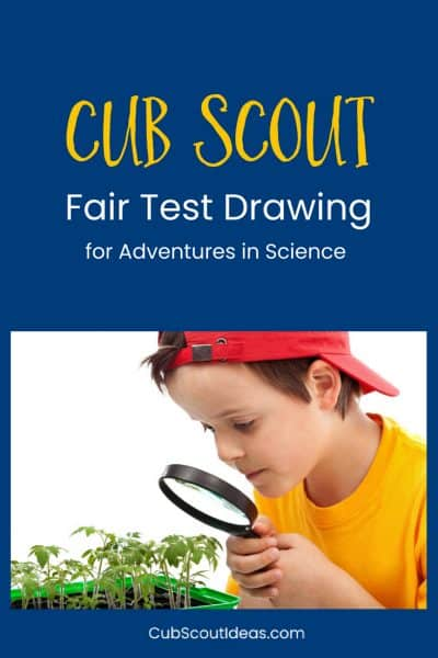 How to Easily Draw a Scientific Fair Test