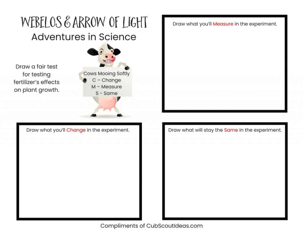 Webelos & Arrow of Light fair test drawing printable