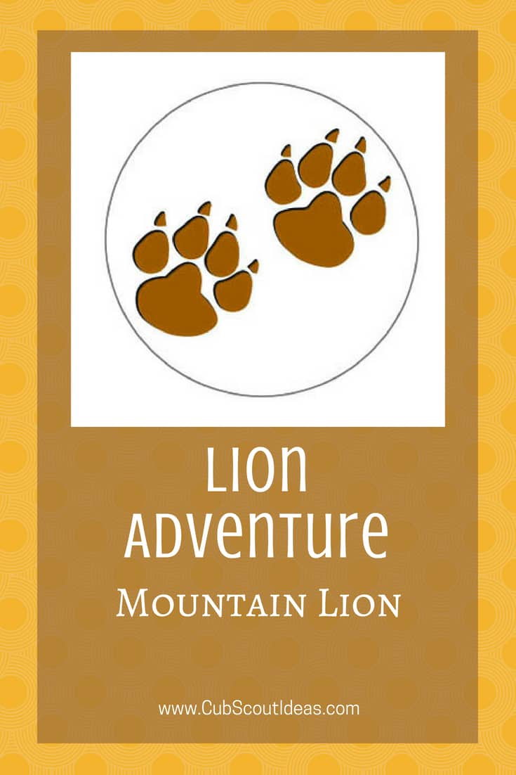 Cub Scout Lion Mountain Lion