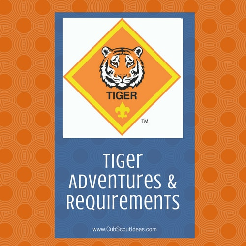 Tiger Adventures & Requirements
