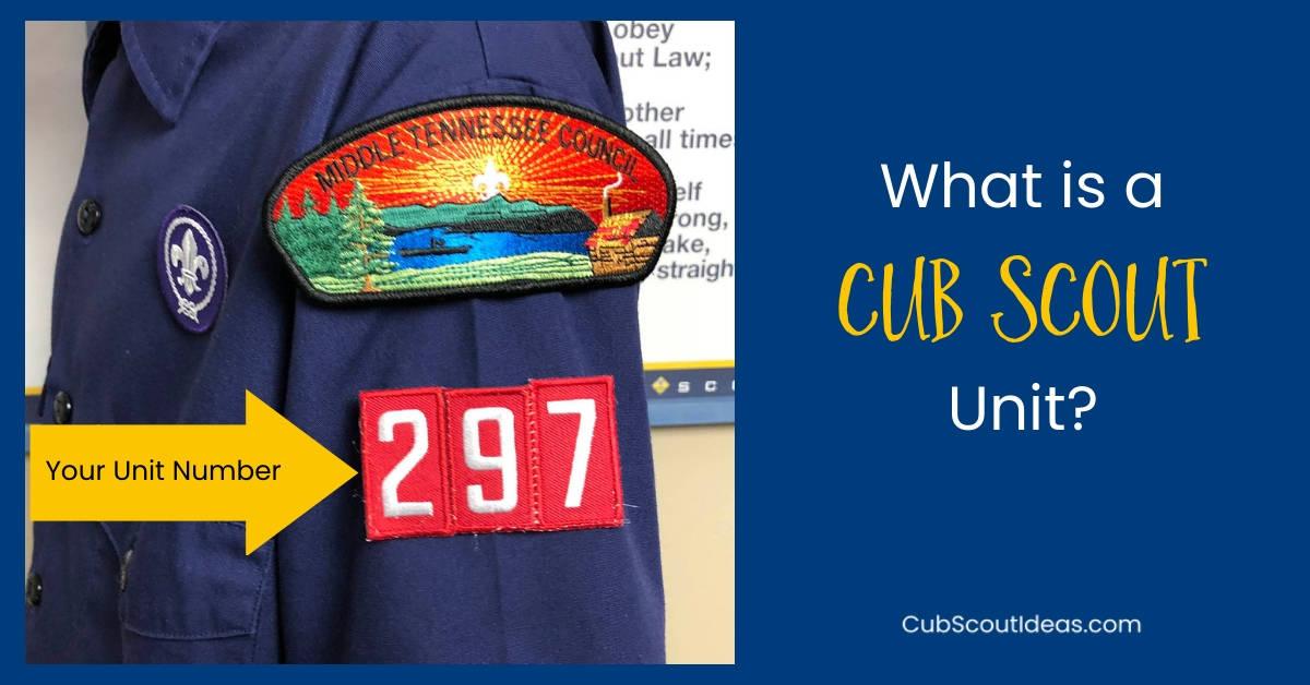 cub scout pack unit