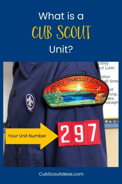 "What is a Scout ""Unit""?"