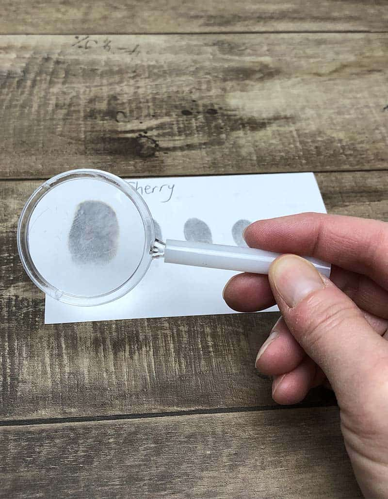 examine fingerprints with magnifying glass