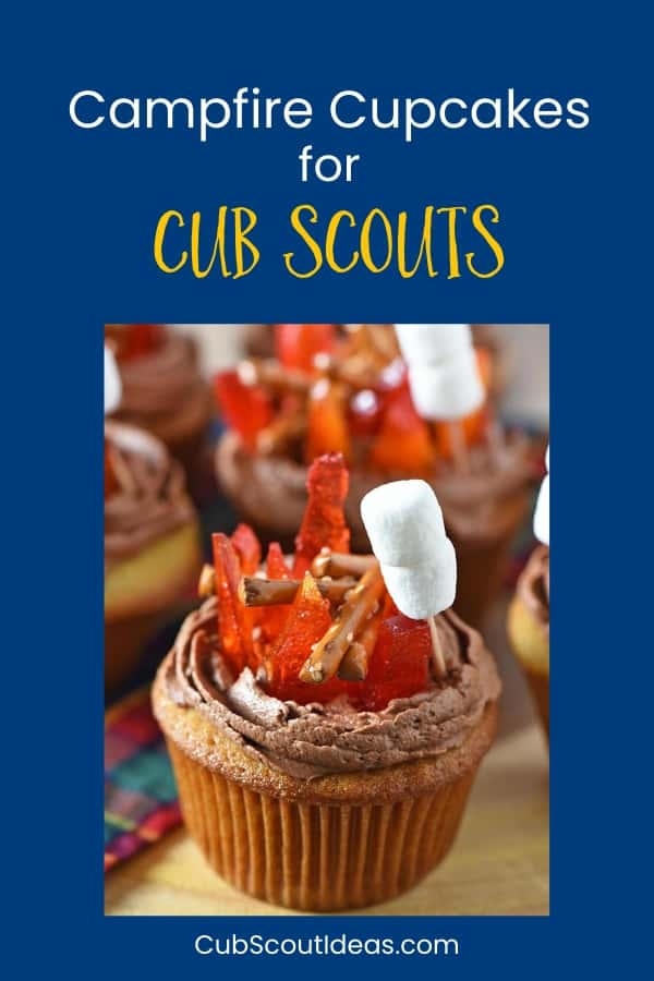 These easy campfire cupcakes are made with pretzels and melted hard candy. They are perfect for a camping themed birthday party or for a Cub Scout Blue and Gold banquet. The sweet treats are fun to make with kids, friends, and families. Get a great recipe as well as step-by-step instructions.