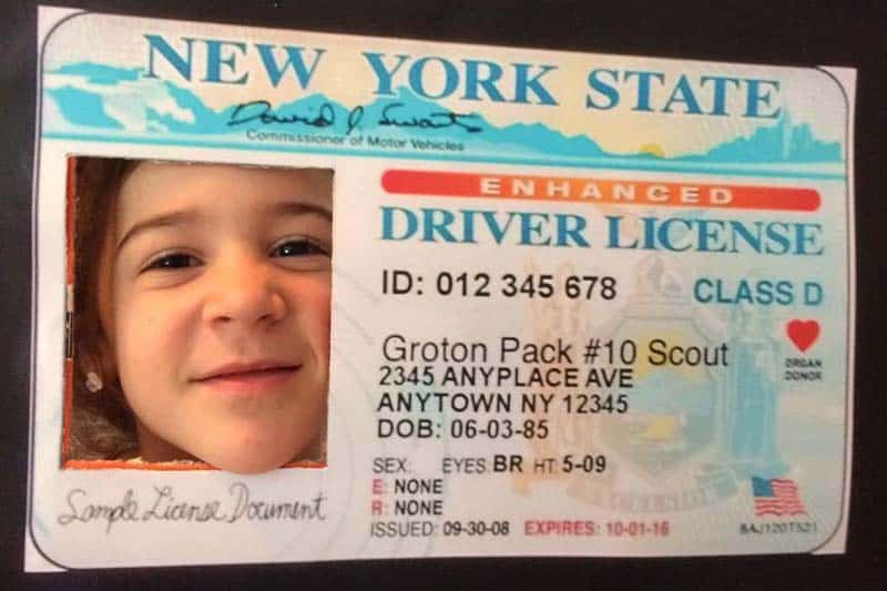 pinewood derby drivers license photo frame