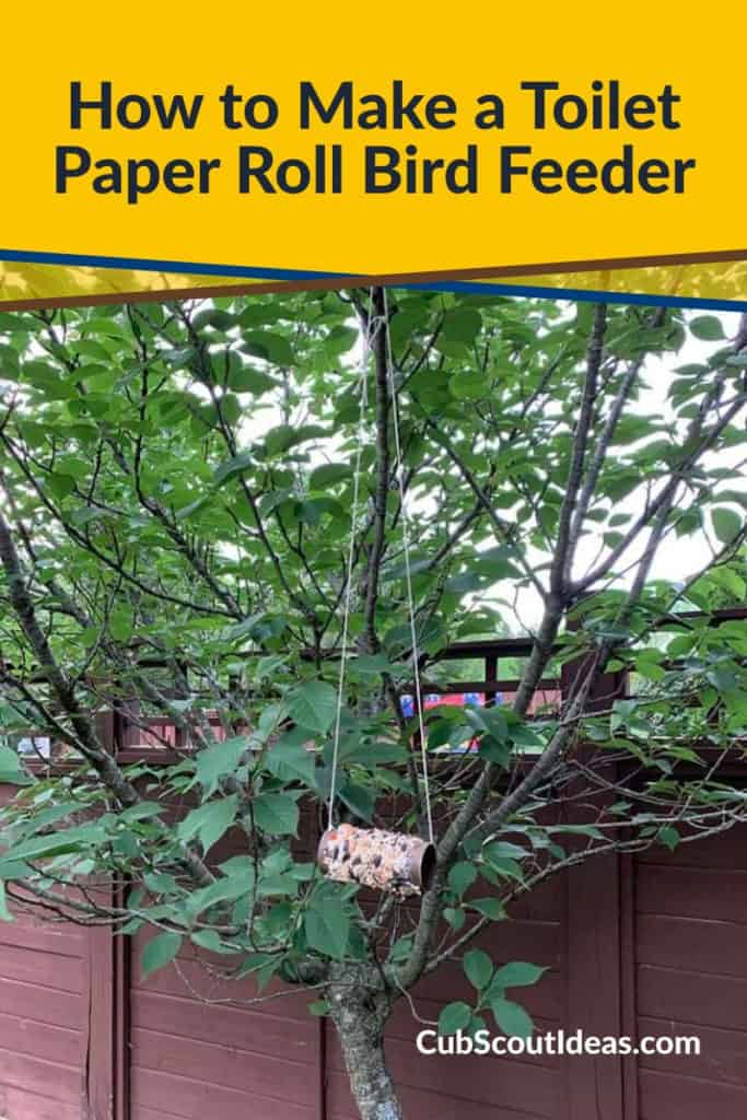 kids bird feeder project