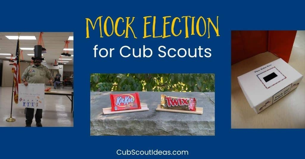 mock election for cub scouts