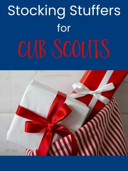 inexpensive stocking stuffers for cub scouts