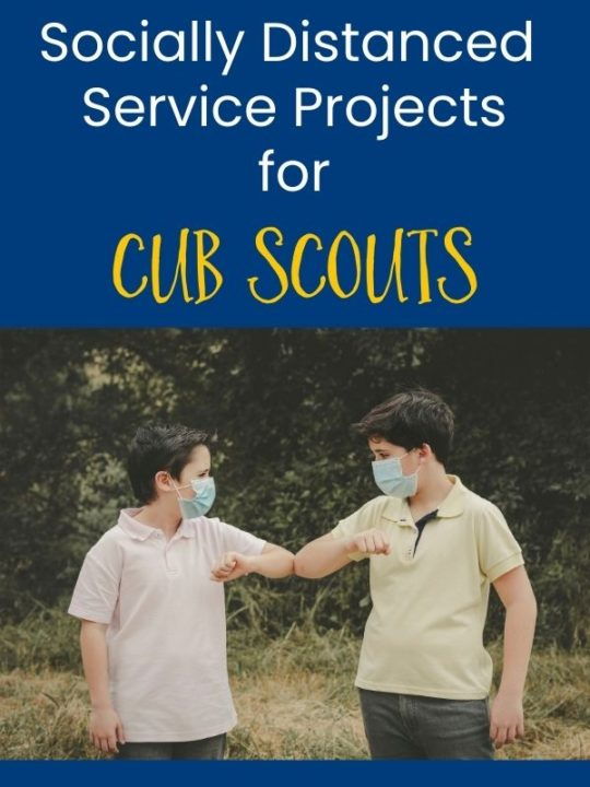 cub scouts socially distanced service projects