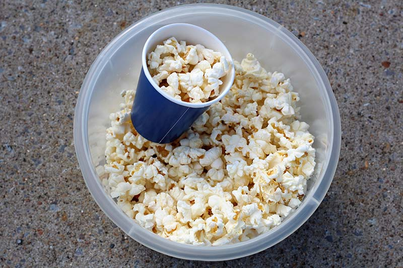 popcorn game for cub scouts